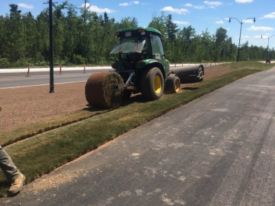 Turf being laid on the side of the road