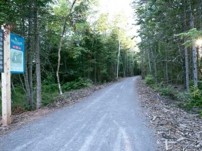 Mill Creek Nature Park trail