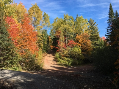Walking trail in Mill Creek Nature Park during the fall season